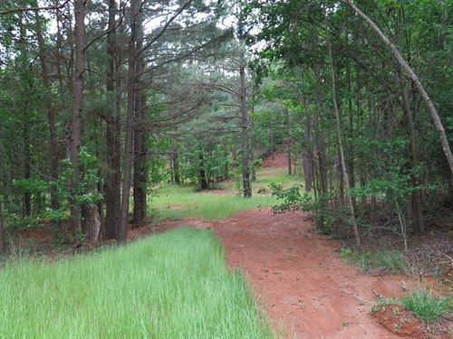90 Acres With Big View And Pond : Palestine : Anderson County : Texas