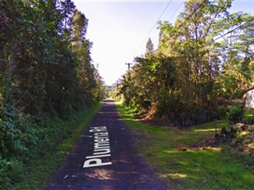 Hawaii, Near Hilo : Pahoa : Hawaii County : Hawaii