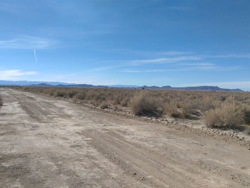5 Acres Near Fort Garland & Blanca : Blanca : Costilla County : Colorado