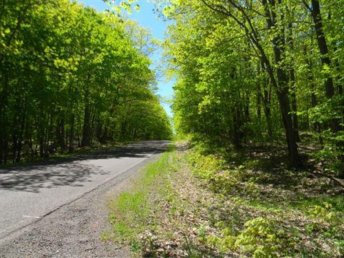 Coles Creek Road - Lot 12 : Houghton : Michigan