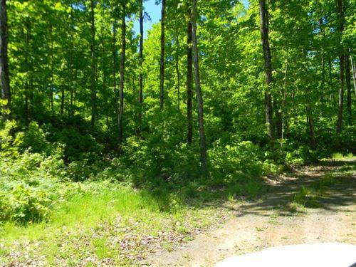 Coles Creek Road - Lot 9 : Houghton : Michigan