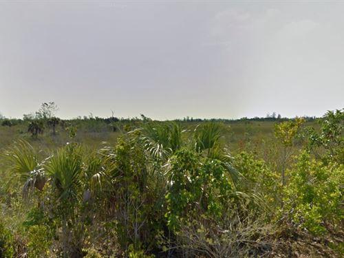 Dade County, Fl $225,000 Neg : Homestead : Miami-Dade County : Florida