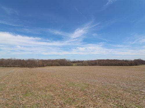 Taylor Rd - 77 Acres : Doylestown : Wayne County : Ohio
