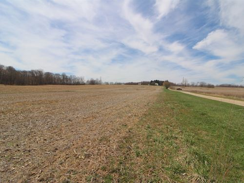 Taylor Rd - 6 Acres : Doylestown : Wayne County : Ohio