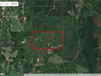 80 Acres in Crystal Springs MS : Crystal Springs : Copiah County : Mississippi