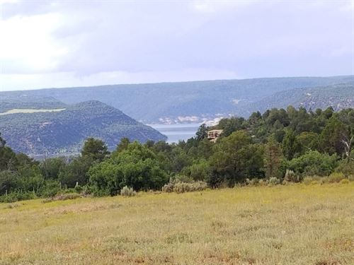 Home Site With Views : Dolores : Montezuma County : Colorado