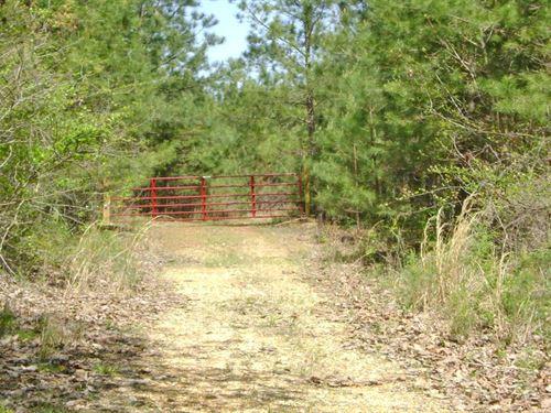 Buttone 40 Tract : Hamilton : Marion County : Alabama