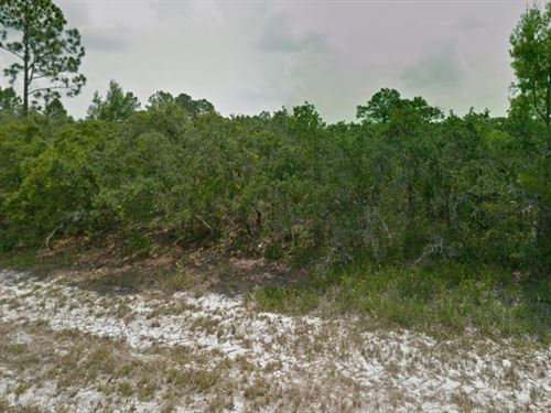 Highlands County, Fl $10,000 : Lake Placid : Highlands County : Florida