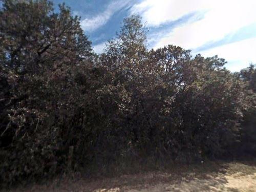 Marion County, Fl $18,000 Neg : Umatilla : Marion County : Florida