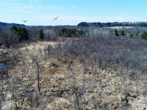 Waterfowl, Deer, Turkey, Trapping : Wonewoc : Juneau County : Wisconsin
