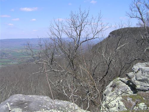 4 Bluff Lots, App, 30 Acres Total : Dunlap : Sequatchie County : Tennessee
