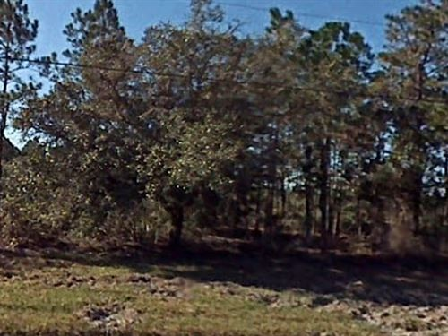Polk County, Fl $6,000 : River Ranch : Polk County : Florida