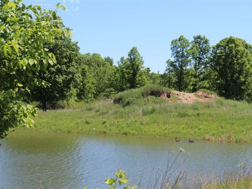 Hunting And Building Land : Arpin : Wood County : Wisconsin