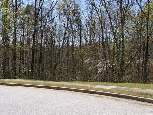 10.15 Acres In Douglasville, GA : Douglasville : Douglas County : Georgia