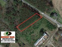 .48 Acre Residential Lot For Sale : Hobgood : Halifax County : North Carolina