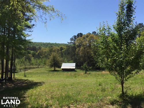 Shoal Creek Road Farm & Timber Trac : Ashville : Saint Clair County : Alabama
