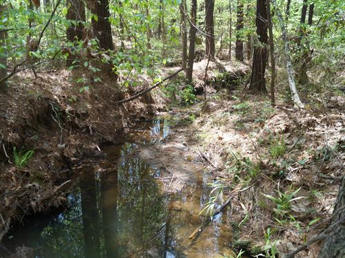14 Acres, Fairfield County, Sc : Great Falls : Fairfield County : South Carolina