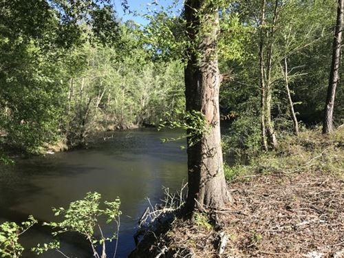 Belmont Rd. Ogeechee River Tract : Lousiville : Jefferson County : Georgia