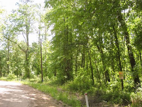 4.2 Ac Gourd Creek Road : New Waverly : Walker County : Texas