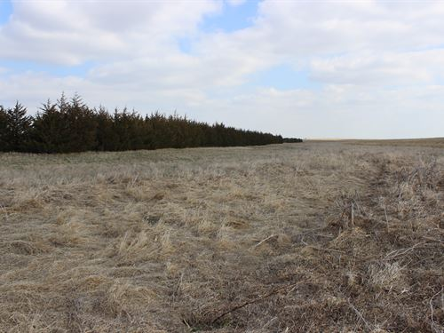 Hayes County Farm & Hunt : Grainton : Hayes County : Nebraska