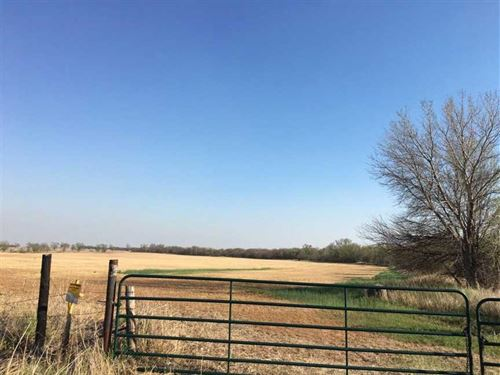 82 Acres Harper County Kansas : Attica : Harper County : Kansas