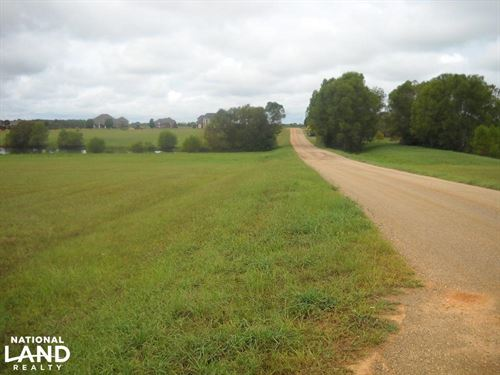 Windhaven Lakes 2.9 Acre Lot : Burkville : Lowndes County : Alabama