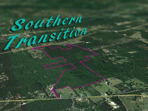 285 Acres Faulkner Road : Security : Walker County : Texas