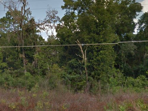 Dixie County, Fl $4,500 Neg : Old Town : Dixie County : Florida