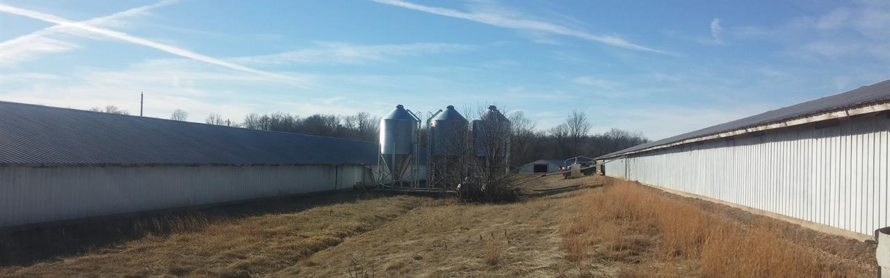6 House Tyson Contract Broiler Farm : Green Forest : Carroll County : Arkansas