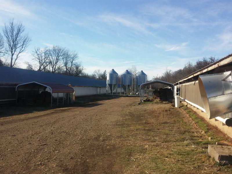 6 House Tyson Contract Poultry Farm : Green Forest : Carroll County : Arkansas