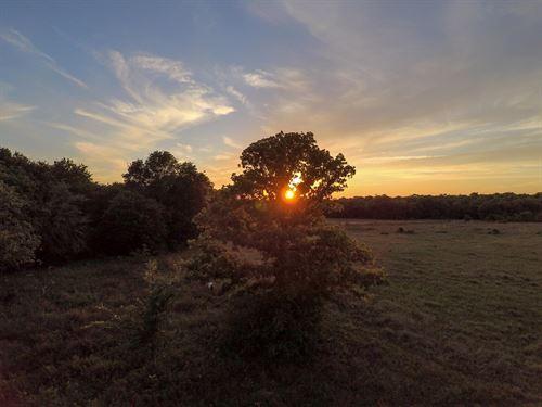 Land In Burleson County : Caldwell : Burleson County : Texas