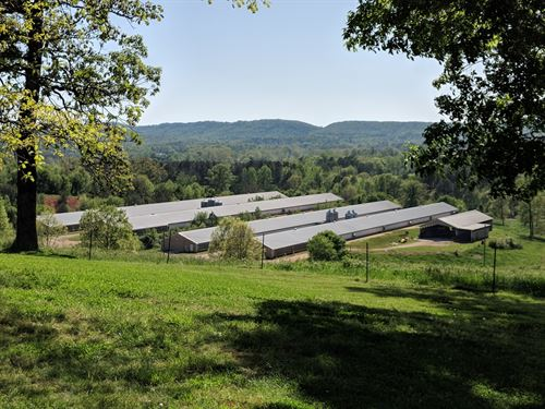 Hilltop Farm : Lafayette : Walker County : Georgia