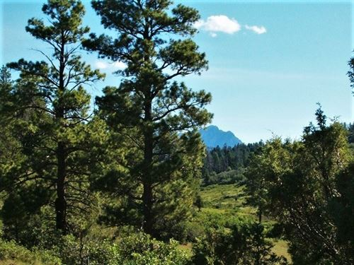 Reserve At Pagosa Peak, Lot 46 : Pagosa Springs : Archuleta County : Colorado