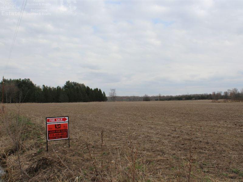 Woods & Ag Land 80 Acres : Owen : Clark County : Wisconsin