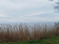 Build On Lake Mattamuskeet : Farifield : Hyde County : North Carolina