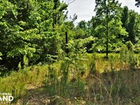 County Road 35 Mobile Home Lot : Fayette : Fayette County : Alabama