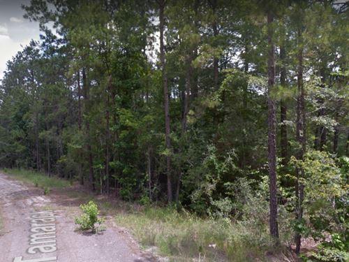 .62 Acres In Brookeland, TX : Brookeland : Jasper County : Texas