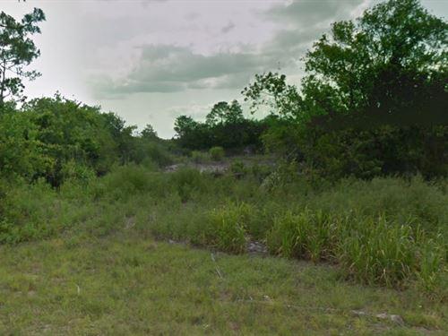 Martin County, Fl $8,800 Neg : Indiantown : Martin County : Florida
