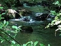 Springlake Farm : Athens : Clarke County : Georgia
