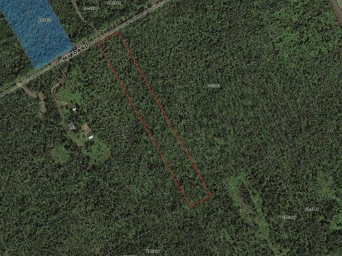 3 Acres In Fern Forest Est, Hi : Keaau : Hawaii County : Hawaii