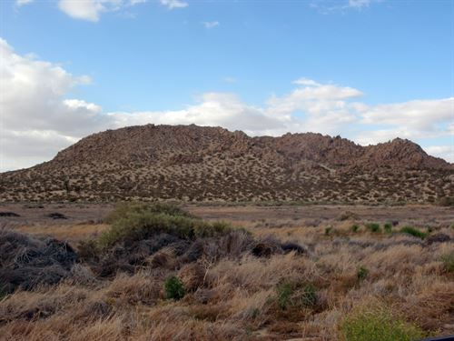 2.5 Acres In Alpine Butte, Ca : Alpine Butte : Los Angeles County : California