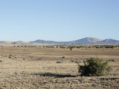 1.16 Acres In Sanders, AZ : Sanders : Apache County : Arizona