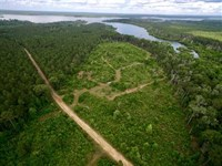 27.5 Acre Tract on Sam Rayburn : Broaddus : San Augustine County : Texas