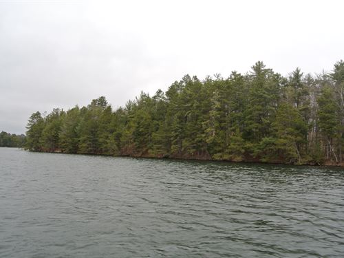 Big Ripley Island On Kawaguesaga : Minocqua : Oneida County : Wisconsin