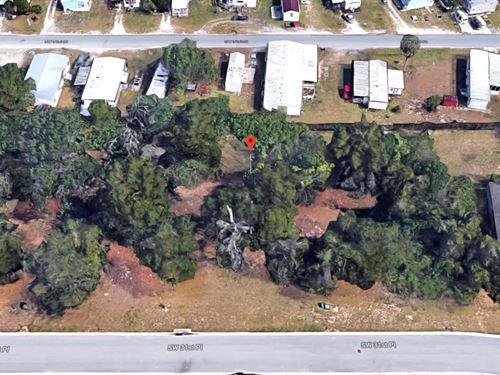 .32 Acres In Ocala, FL : Ocala : Marion County : Florida