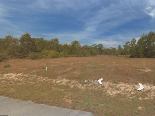 .18 Acres In Poinciana, FL : Poinciana : Polk County : Florida