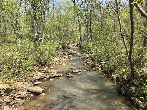 80 Acres of Recreational Timbe : Marshall : Searcy County : Arkansas