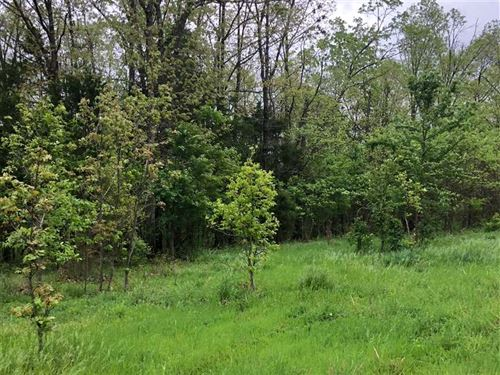 Residential Lot in Close Proximity : Lampe : Stone County : Missouri