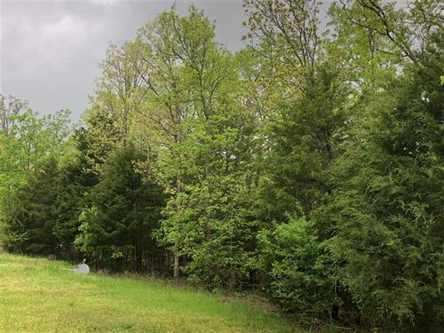 Residential Lot In Lampe Missouri : Lampe : Stone County : Missouri