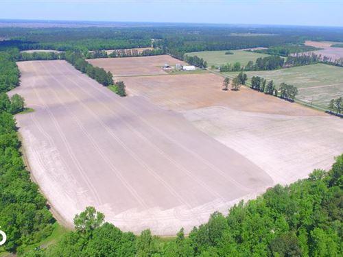 South Honey Hill Farm : Hallsboro : Columbus County : North Carolina